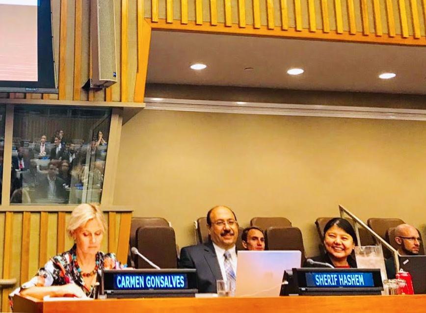 Sherif Hashem at UN